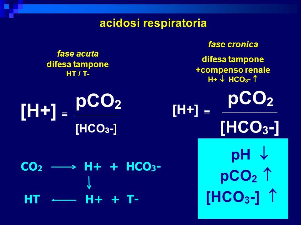 pCO2 pCO2 [H+]  [HCO3-] pCO2  [HCO3-]  [H+]  acidosi respiratoria